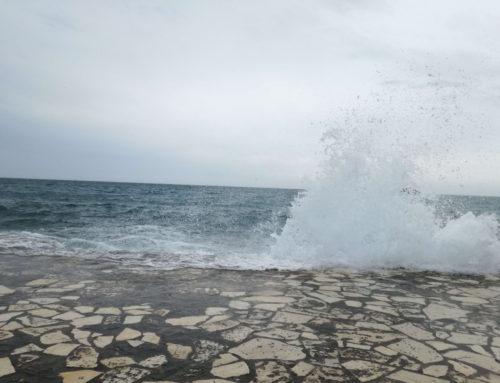 V ritmu morja